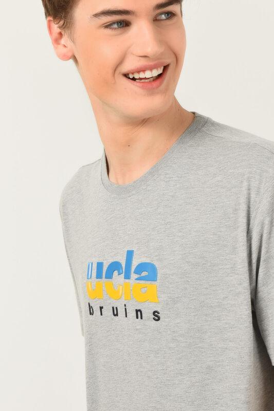 BORON Gri Bisiklet Yaka Baskılı Erkek T-shirt - Thumbnail