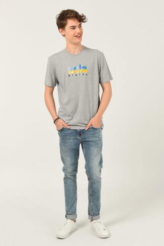 BORON Gri Bisiklet Yaka Baskılı Erkek T-shirt - Thumbnail (2)