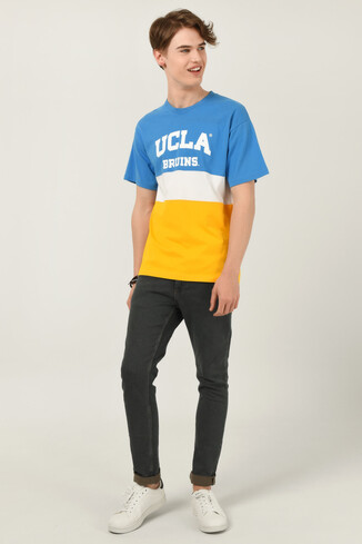 BRAWLEY Mavi Oversize Bisiklet Yaka Baskılı Erkek T-shirt - Thumbnail (2)