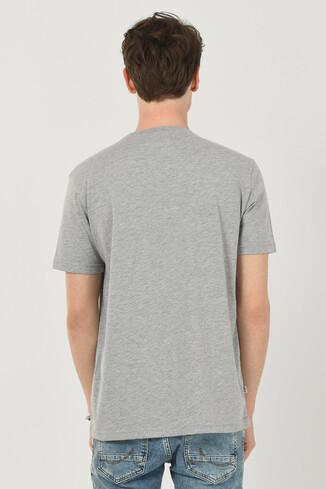 DAVIS Gri Bisiklet Yaka Erkek T-shirt - Thumbnail (3)